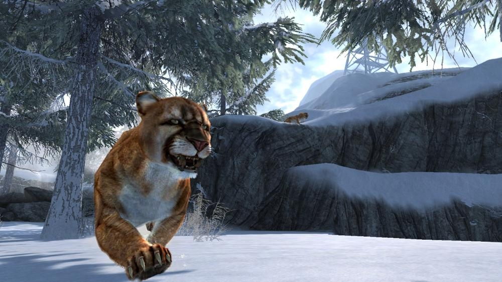 Image from Cabela's Dangerous Hunts 2013