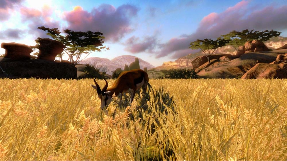 Image from Cabela's Hunting Expeditions