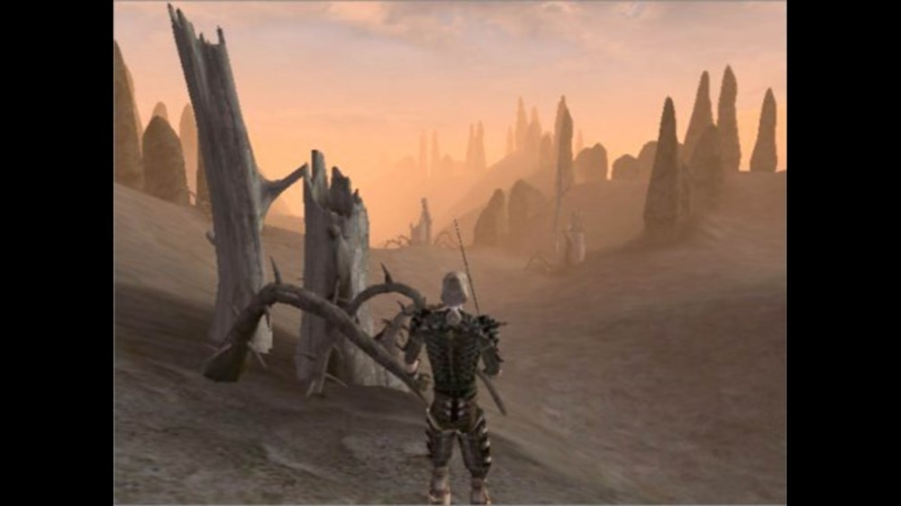Image from Morrowind