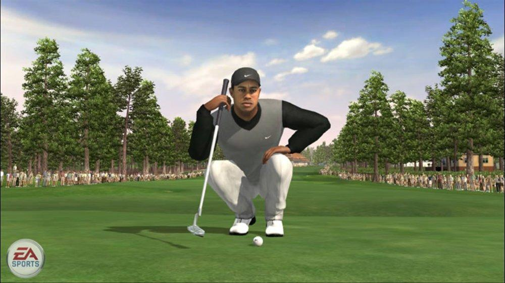 Image from TigerWoodsPGATOUR®07