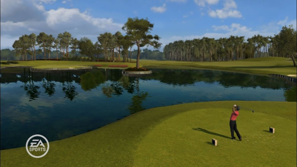 Image from TigerWoodsPGATOUR® 09