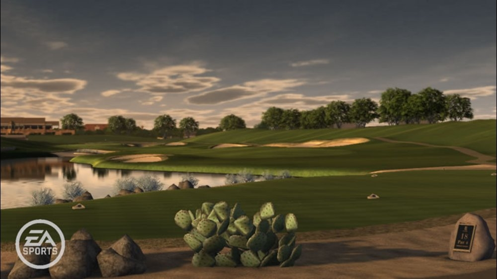 Image from TigerWoodsPGATOUR® 11