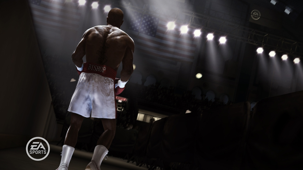 Imagem de FIGHT NIGHT CHAMPION