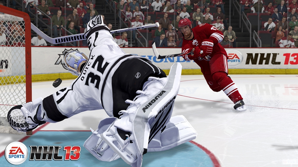 Image from NHL13