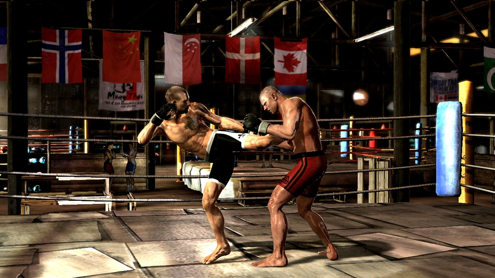 Image from Supremacy MMA