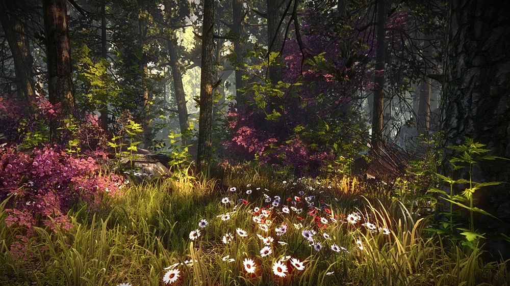Bild von The Witcher 2