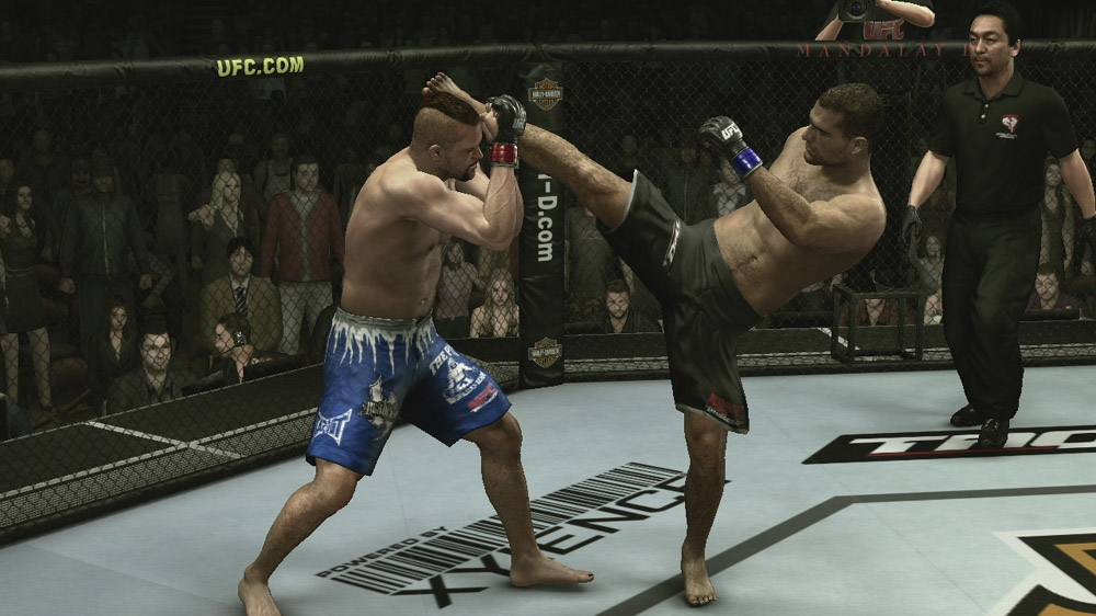 Image from UFC 2009 Undisputed