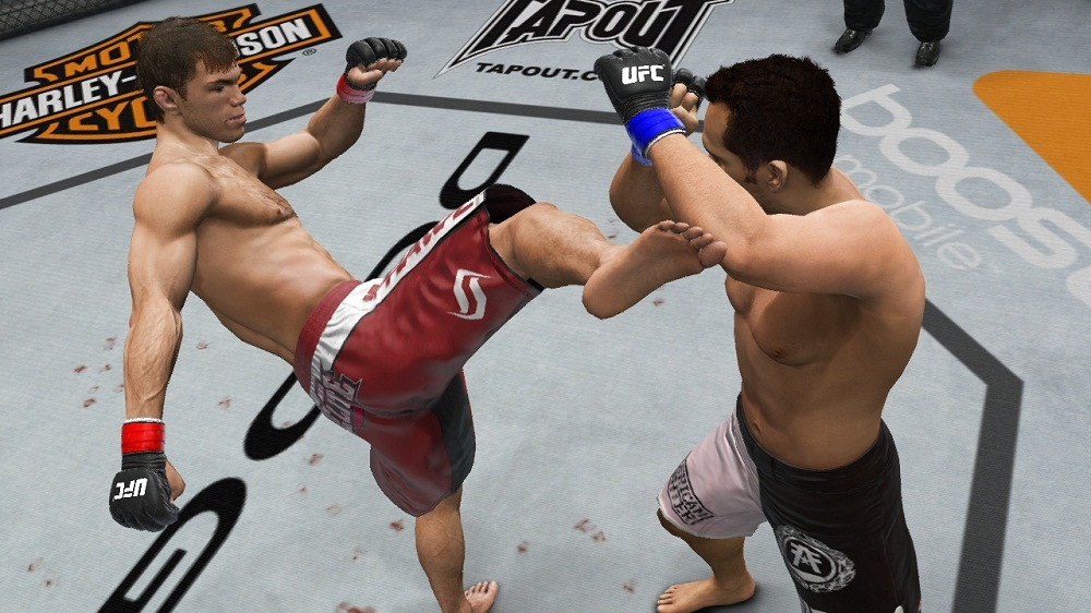 Image from UFC Undisputed 3