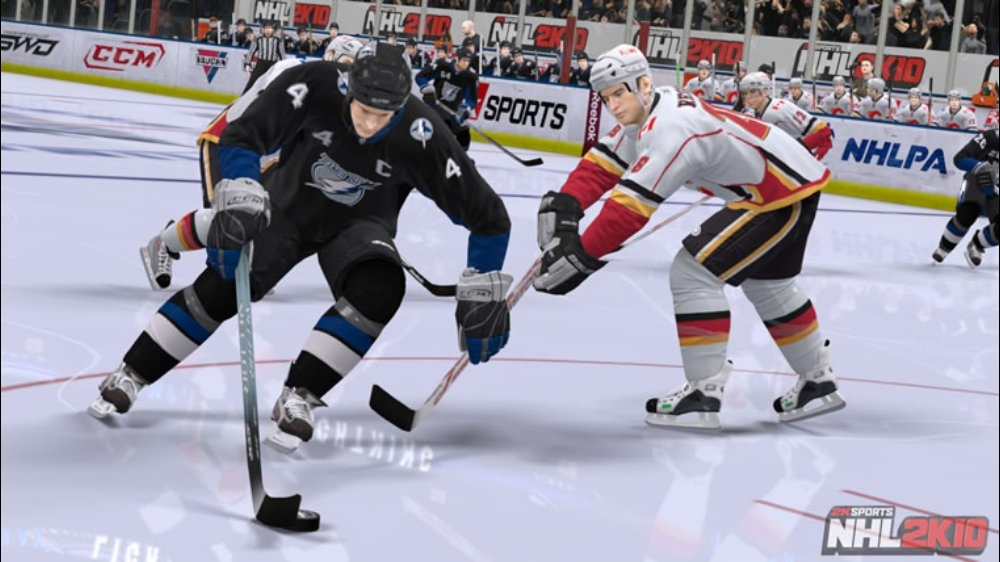 Image from NHL 2K10