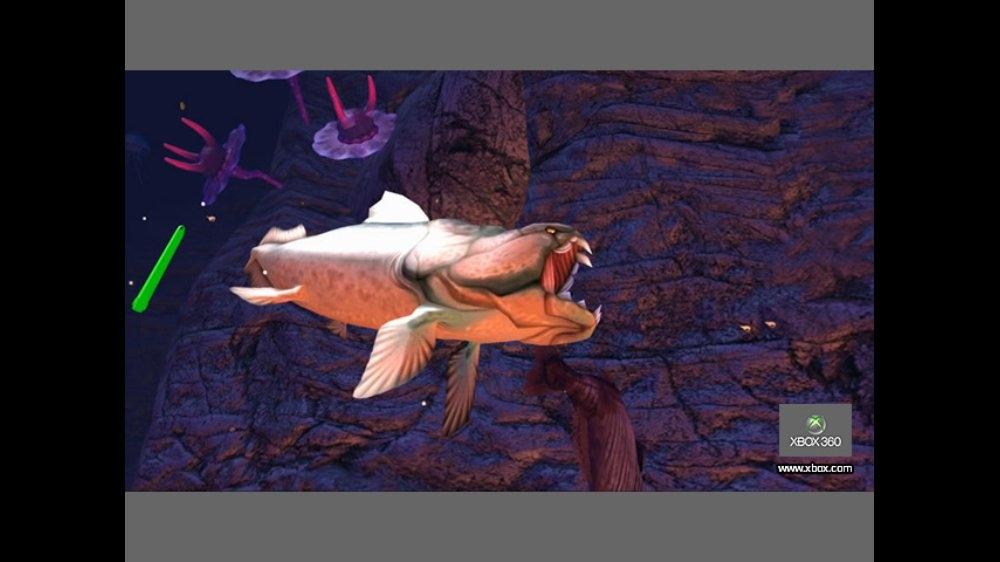 Sealife Safari のイメージ
