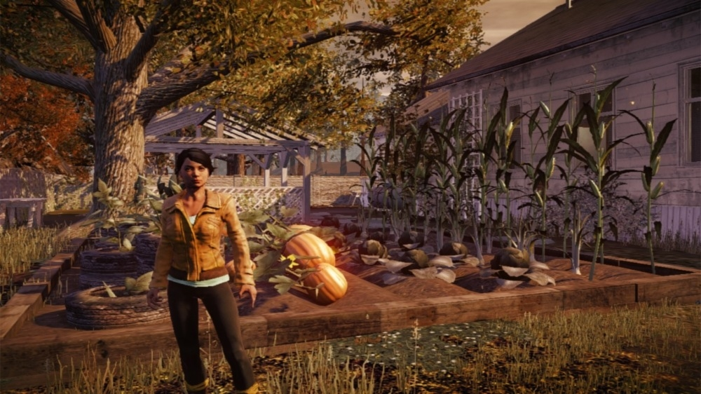 Obraz z State of Decay