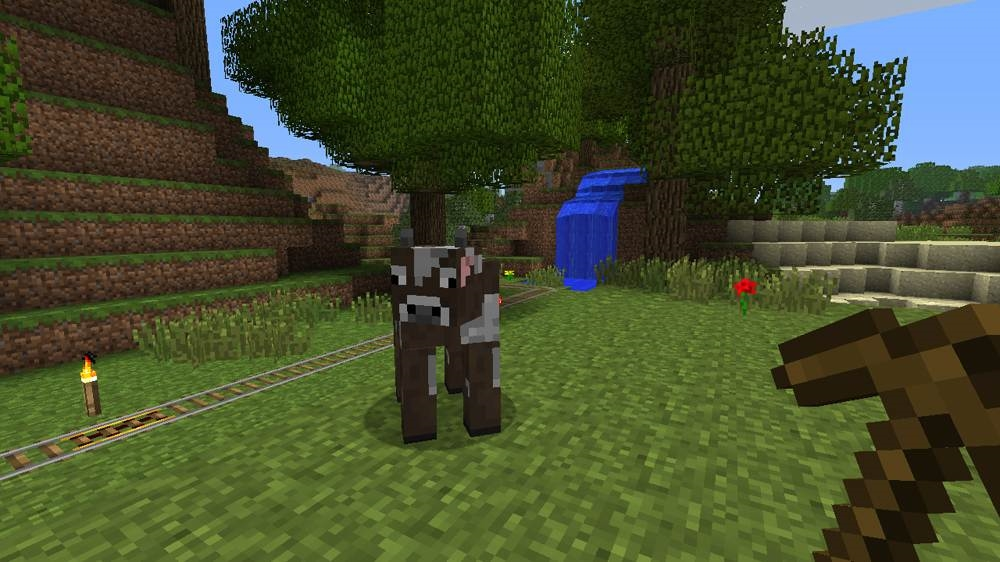 Image from Minecraft: Xbox 36