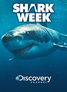 Shark Week Premium Theme