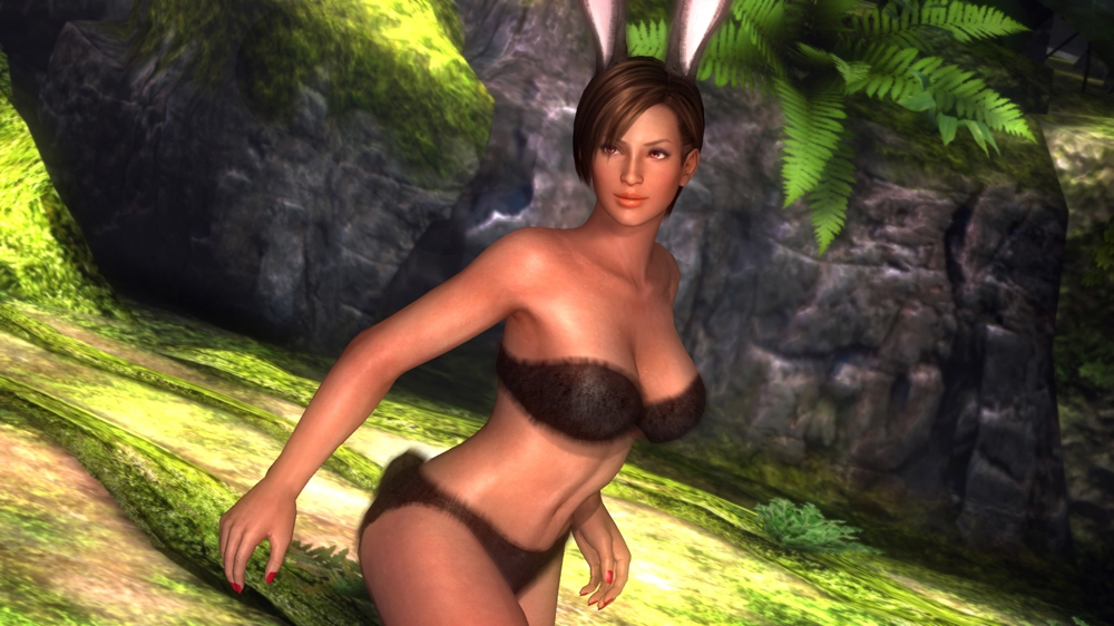 Image from Dead or Alive 5 DOATEC Divas