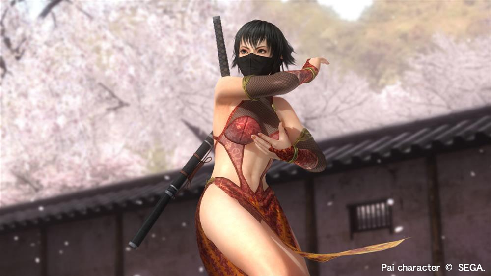 Imagen de DOA5LR Clan ninja 3 - Pai