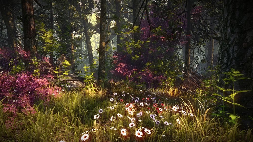 Bild von The Witcher 2 : Assassins of Kings - Flashback Part 2