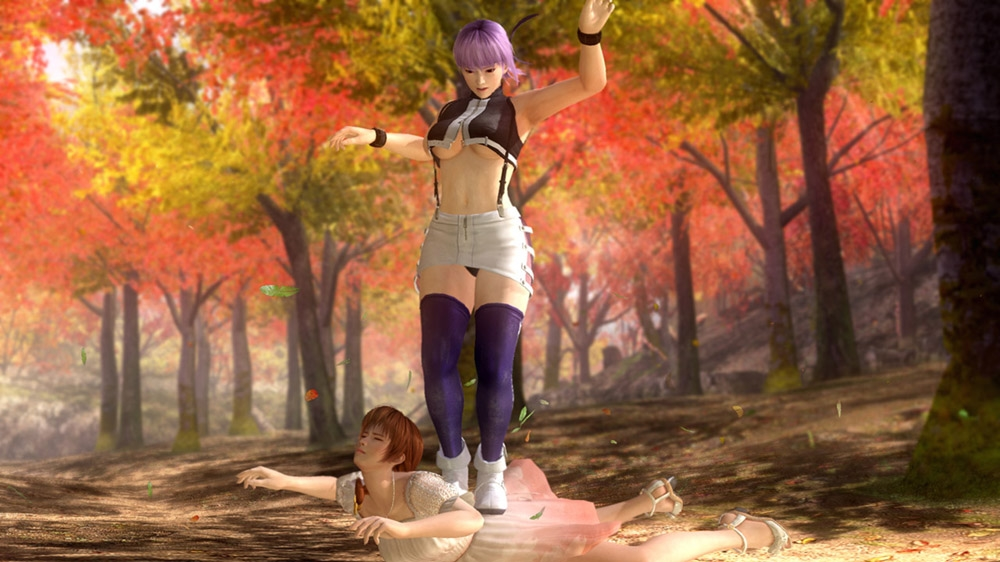Image from Intimate Ayane Costume