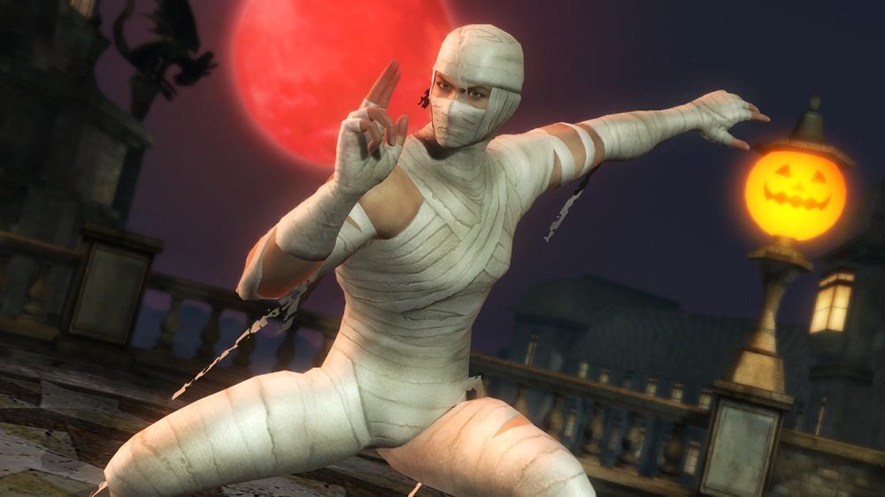 Image from Hayabusa Halloween Costume