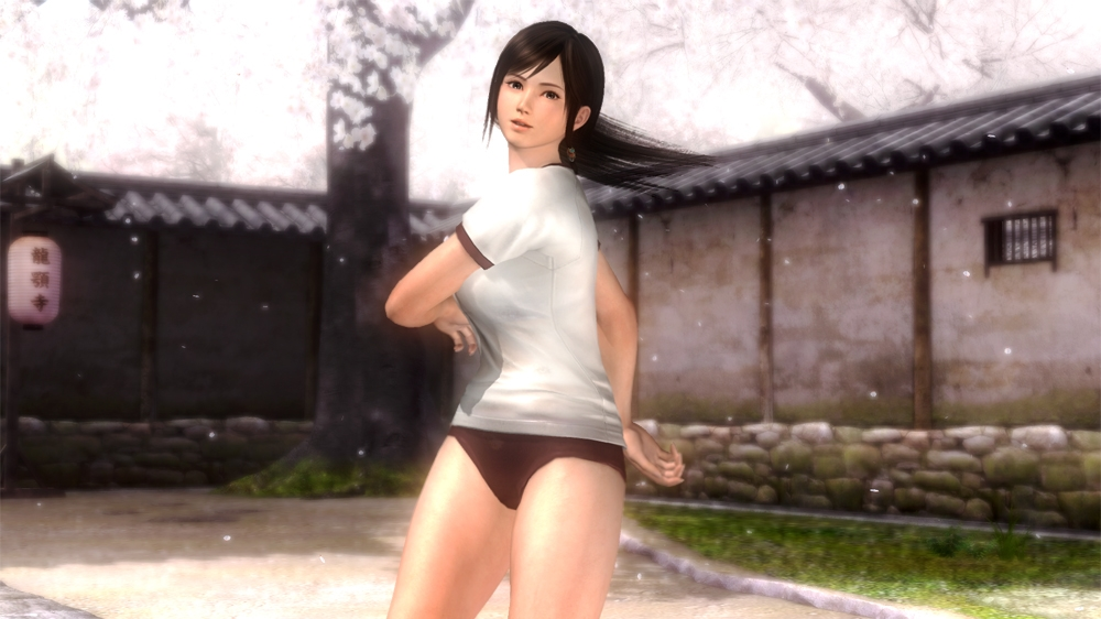 Imagem de Fatos Dead or Alive 5 - Aula de Ginstica
