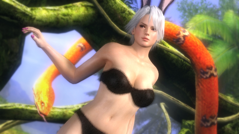 Image from Dead or Alive 5 Special Bunny Pack