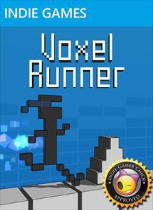 Voxel Runner