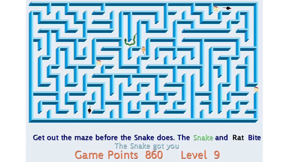 Image from Snake Maze