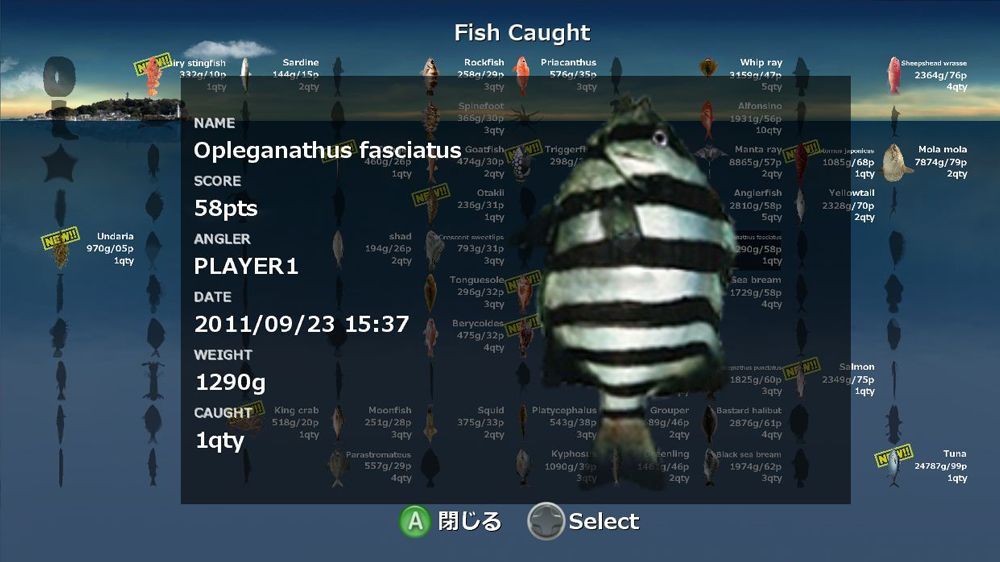 Image from FITS-Fishing in the sea
