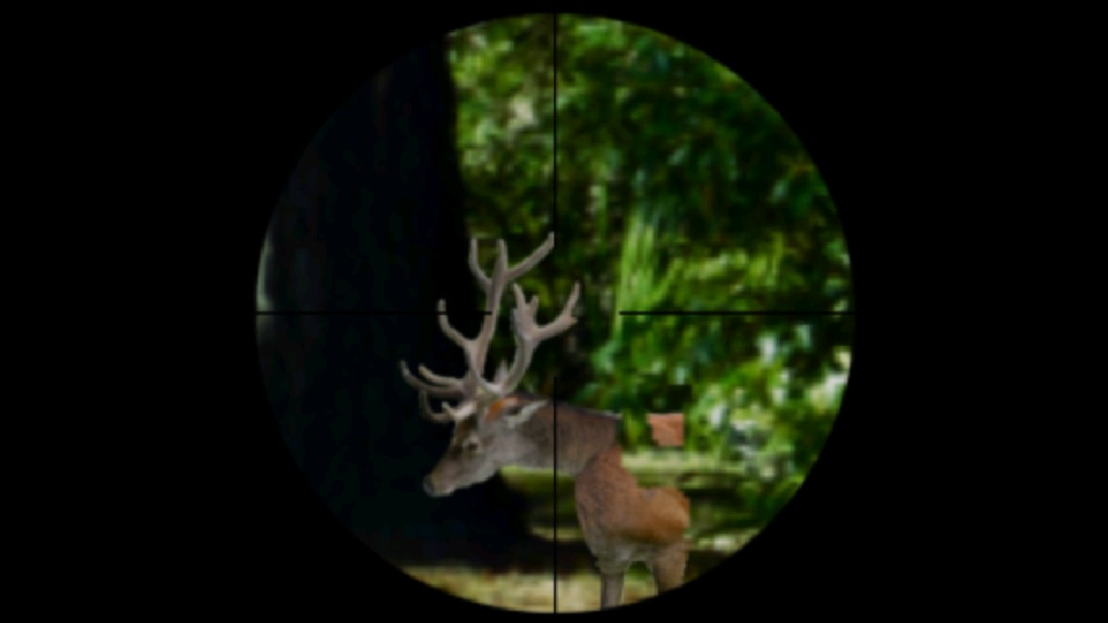 Image from Fierce Game Hunting