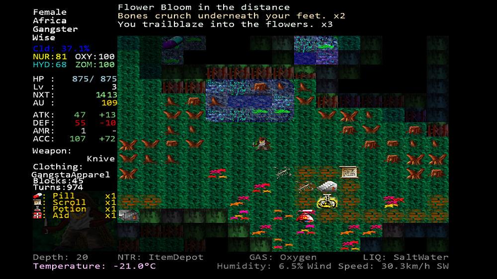 Image de Zombie Mine Quest